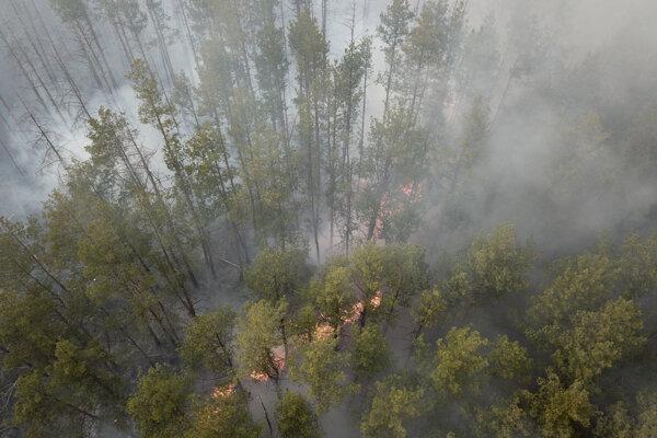 Požiar v oblasti Černobyľu.