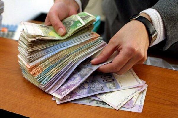 Štátu by vyplatením DPH vznikla škoda 12 miliónov korún.