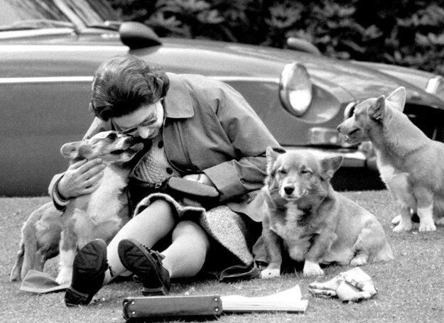 Na snímke z 12. mája 1973 britská kráľovná Alžbeta II. so svojimi psami plemena corgi vo Windsore.