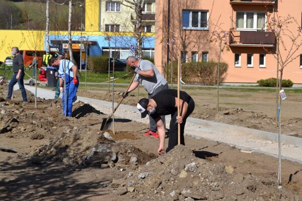 Výsadbe zelene sa venujú aj v Turzovke.