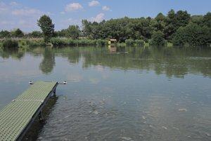 Rybári malé rybky v rybníku pravidelne prikrmujú.