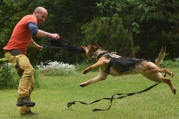 Momentka z výcviku.