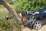 Vodič narazil do stromu.