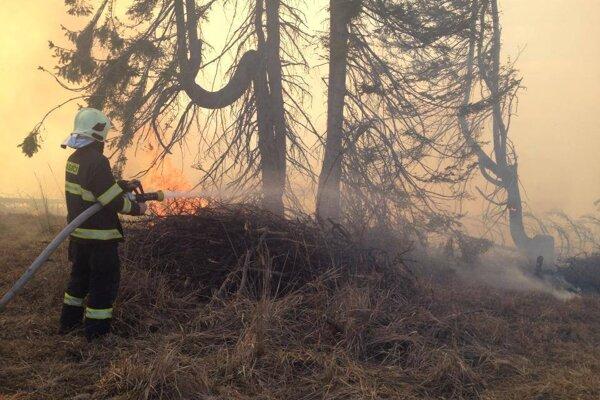 Boj s lesným požiarom.
