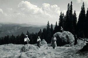 Zaostalá agrárna krajina sa počas dvadsiatich rokov modernizovala a vyrástla mladá slovenská generácia.