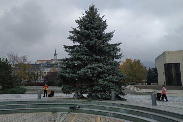 Vianočný strom na námestí.
