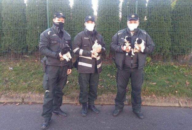Policajti sa šteniatok ujali.