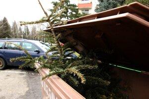 Mesto začne zbierať vianočné stromčeky.