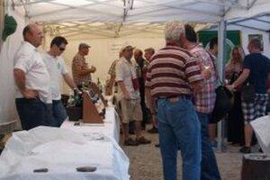 Degustácie vínneho festivalu sú v pivniciach a stánkoch nitrianskeho podhradia dnes až do 22. hodiny.