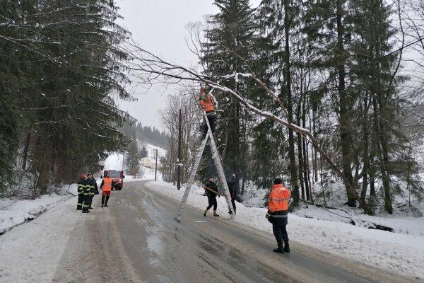 Dobrovoľní hasiči zasahovali pri spadnutom strome.