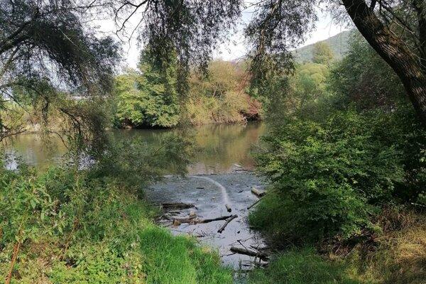Významné mokrade sa nachádzajú aj v Revištskom podzámčí.