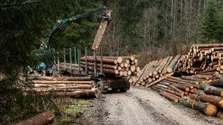 Dreva je málo a výrazne zdražuje. Porastú aj ceny drevodomov
