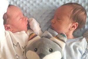 Jakubko Sýkora (2750 g a 47 cm) a Martinko Sýkora (2700 g a 47 cm) sa narodili 3. februára rodičom Anne Márii a Martinovi z Levíc.