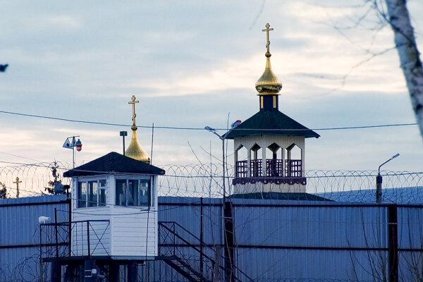 Pohľad na nápravný tábor č. 2 (IK-2) v meste Pokrov východne od Moskvy.
