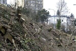 Pozemok, na ktorom prebehol sporný vyrúb stromov na Drotárskej ulici.