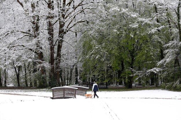 Muž kráča so psom v zasneženom parku v Záhrebe 6. apríla 2021 po snežení.
