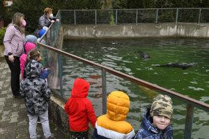 Deti z Kavečian pri tuleňoch.