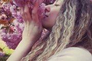 Alica Jelačičová tvorí kvetinové obrazy