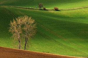 Vychutnajte si sériu fotografií farieb Turca a Moravy počas štyroch ročných období.