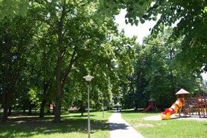 Minulý týždeň preverili stromy v parčíku na Hollého ulici, kde je detské ihrisko Sova.