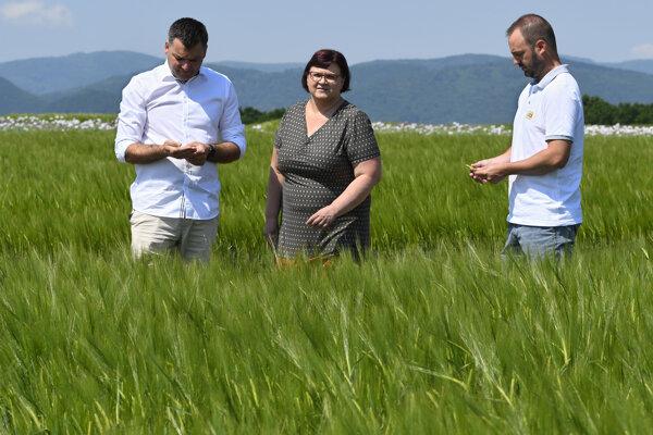 Sladovnícky poľný deň sa konal v priestoroch Skúšobnej stanice Ústredného kontrolného a skúšobného ústavu poľnohospodárskeho vo Vranove nad Topľou.