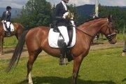 Tamara Polláková s koňom Charleen