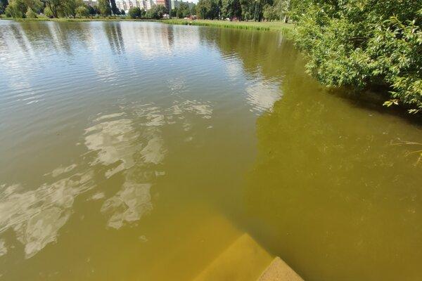 Voda v jazere je aktuálne hnedá.