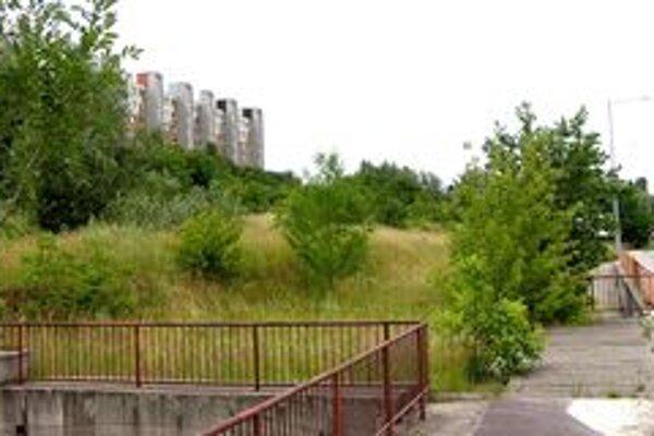 Dva nové domy by mali podľa mesta stáť na pozemku medzi Viničkami a cestou na Kmeťovej. Teraz tam rastie zeleň.