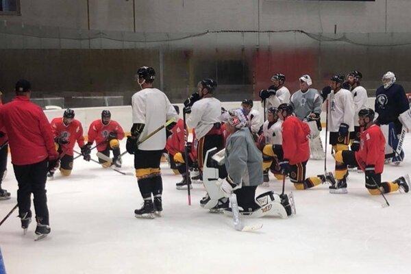 Hokejisti odštartovali prípravu na ľade.