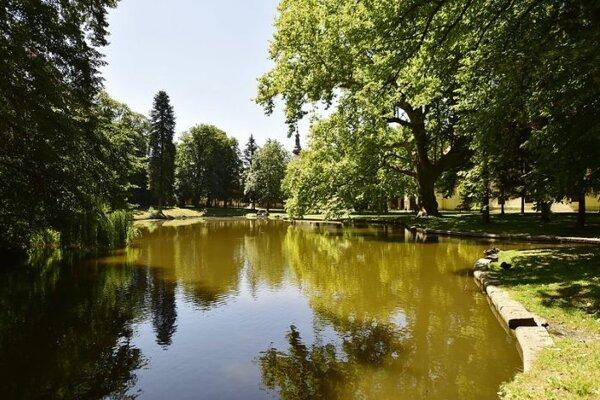 Park v Stupave