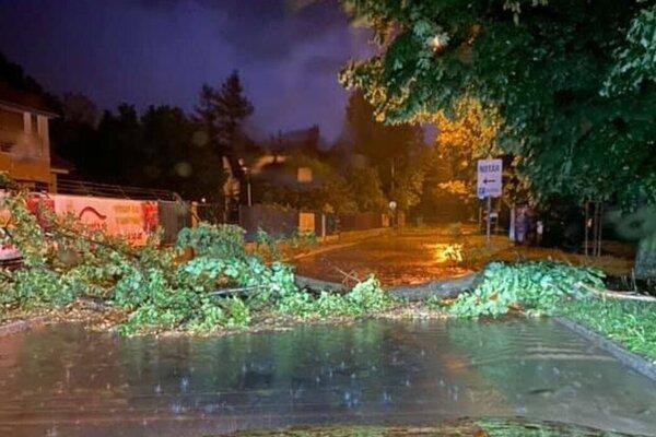 Silný vietor, ktorý pred vyše dvoma týždňami sprevádzal silnú búrku v Banskej Bystrici, lámal stromy.