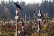 Časť cintorína pre obete covidu v Kolpine neďaleko Petrohradu.