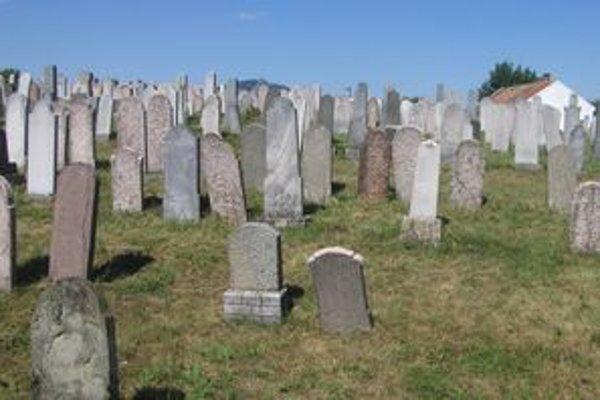 Židovská obec si môže vybrať z 8 návrhov rekonštrukcie židovského cintorína na Klokočine. Je na ňom asi 5 000 hrobov.