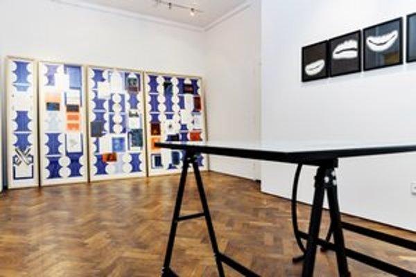 Záber z výstavy Follow the Line v bratislavskej galérii Krokus. Výstava potrvá do 28. júna.