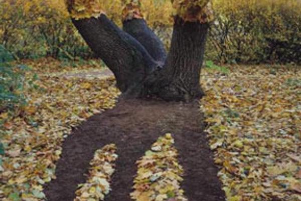 Francisco Infante: Budovanie znaku alebo vyvrátená perspektíva. 1984-86. (Rusko)