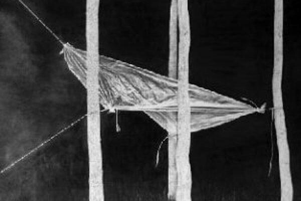 Výstava švajčiarskeho výtvarníka Charbela Ackermanna Wood Stage pozostáva zo súboru veľkoformátových kresieb uhľom na papieri, ktoré oživujú rad predmetov a situácií zanechaných neznámou skupinou obyvateľov na okraji lesa.Výstava bude otvorená od 13. jú
