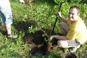 Nové stromy vysádzali aj dobrovoľníci.