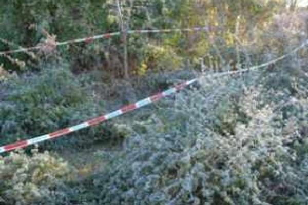 Telo 84-ročnej Heleny Adamovičovej našli v nedeľu 16. októbra