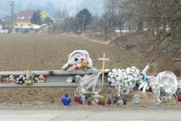 Nehoda sa stala 10. februára, vosdič, ktorý zrazil dve chodkyne išiel vyššou rýchlosťou ako v úseku mal. Matka s dcérou zahynuli.