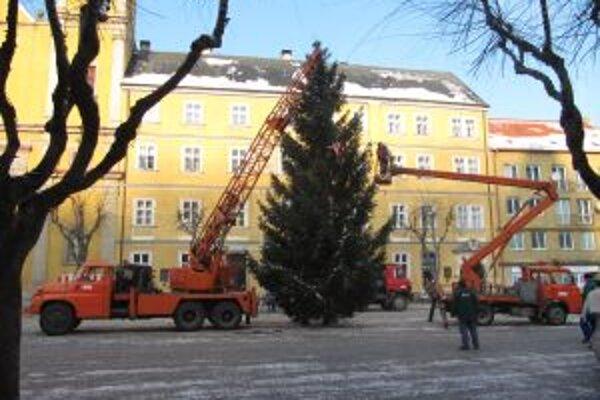Vianočný strom na Mierovom námestí rozsvietia v nedeľu 5. decembra.