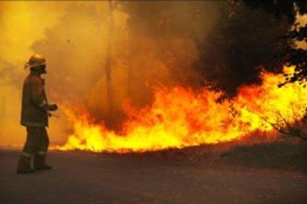 Vypaľovanie trávy býva často dôvodom lesných požiarov.