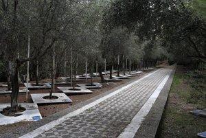 Park, v ktorom si funkcionári MOV vysádzali vlastné olivové stromy.