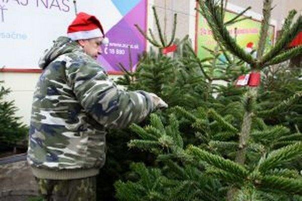 Niektorí presedlali na umelé stromčeky, iní si však nevedia predstaviť Vianoce bez živého.