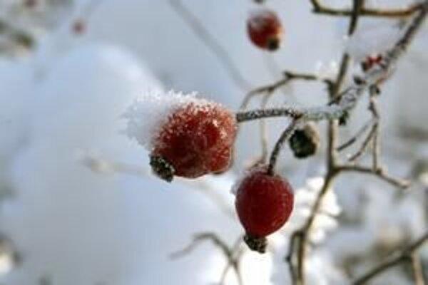 Tieto Vianoce budú pre rodinu Kontríkovcov obzvlášť smutné.