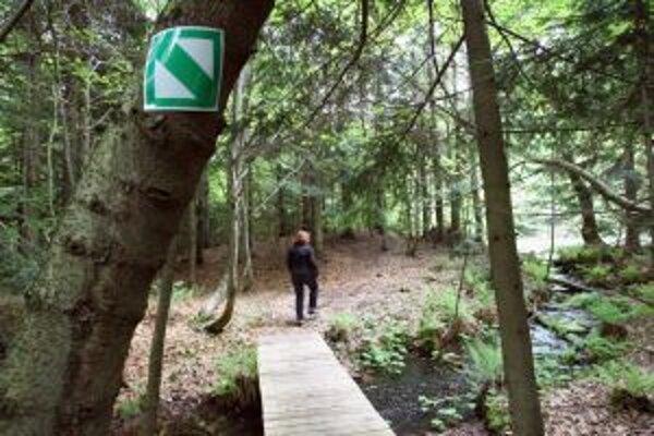 Proti jarnej únave sa dá bojovať aj prechádzkami v prírode.