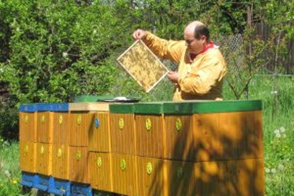 Včelárov tohtoročná úroda medu nepoteší.