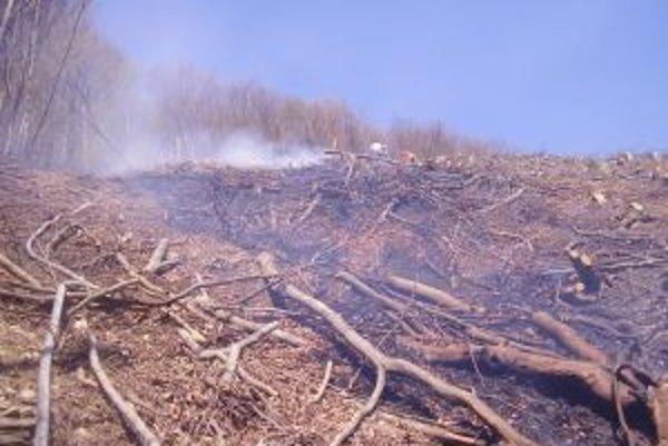 Suché a teplé počasie sprevádzané vetrom zapríčinili v kysuckom regióne viacero lesných požiarov.