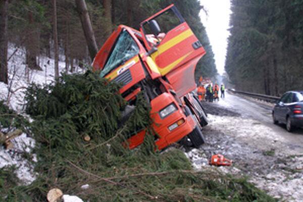 Vozidlo skončilo v priekope, kamionista vyviazol bez zranení.