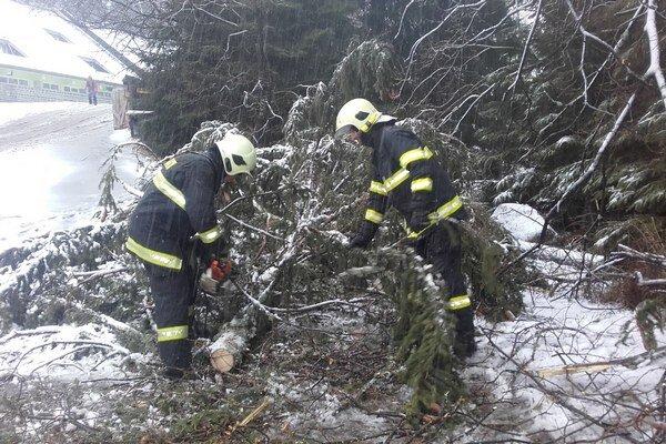 Odstraňovanie padnutého stromu.