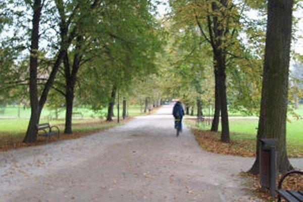 V žiarskom parku rastú stovky stromov. Areál patrí k prioritám v starostlivosti o zeleň.
